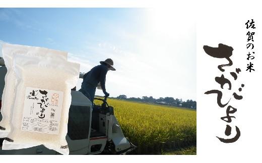 【佐賀県産米】さがびより 七分搗き胚芽付き無洗米4回定期便 2㎏×2×4